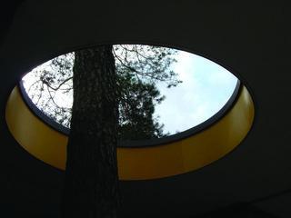 Kroller Muller roof